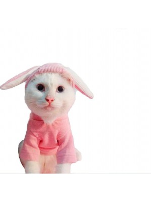 Mumoo Bear Pet Hoodies Knitted Sweaters with Cute Rabbit Ears Cat Dog Pink Grey Clothes for Spring and Autumn