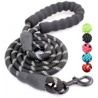 Mumoo Bear mb-l01 5ft Strong Dog Leash with Comfortable Padded Handle and Highly Reflective Threads, Black